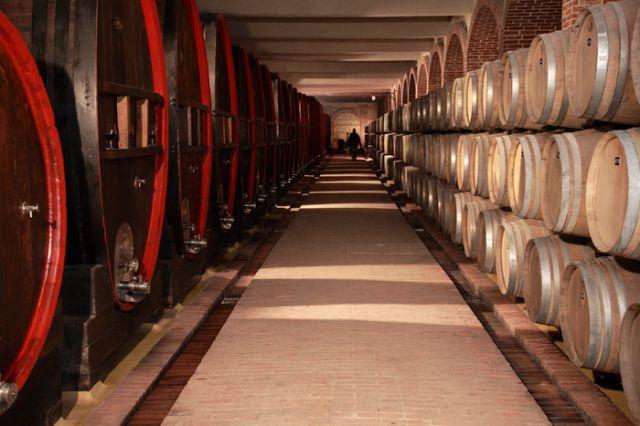 Tikvesh Winery